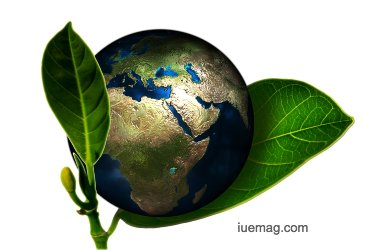 Environment friendly business