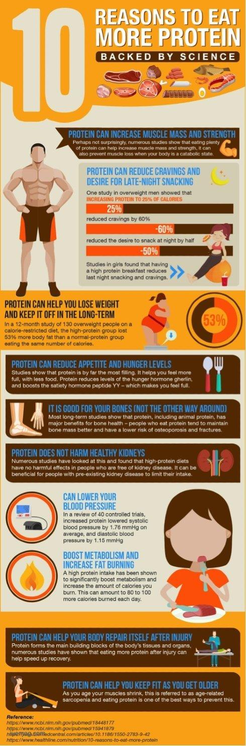 Protein Bee Diet