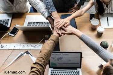 Small business team management