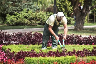 How Deep Should Flower Beds Be