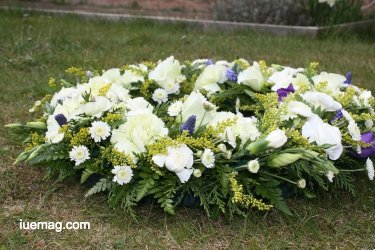 Eco Friendly Funeral