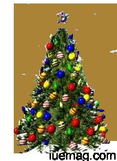 History Of Christmas Tree.The History Of Christmas Tree