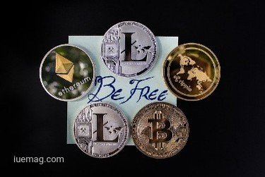 Read a Crypto Signal and Gain Profit from Trading