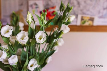 The Top 4 Inspiring Benefits of Keeping Flowers at Home
