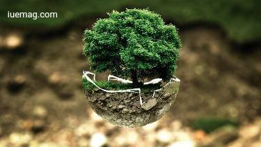 Company's Environmental Efforts