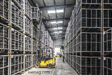 Warehouse Workers Safety